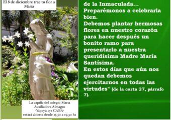 Nivel Primario: El 8 de diciembre trae tu flor a María